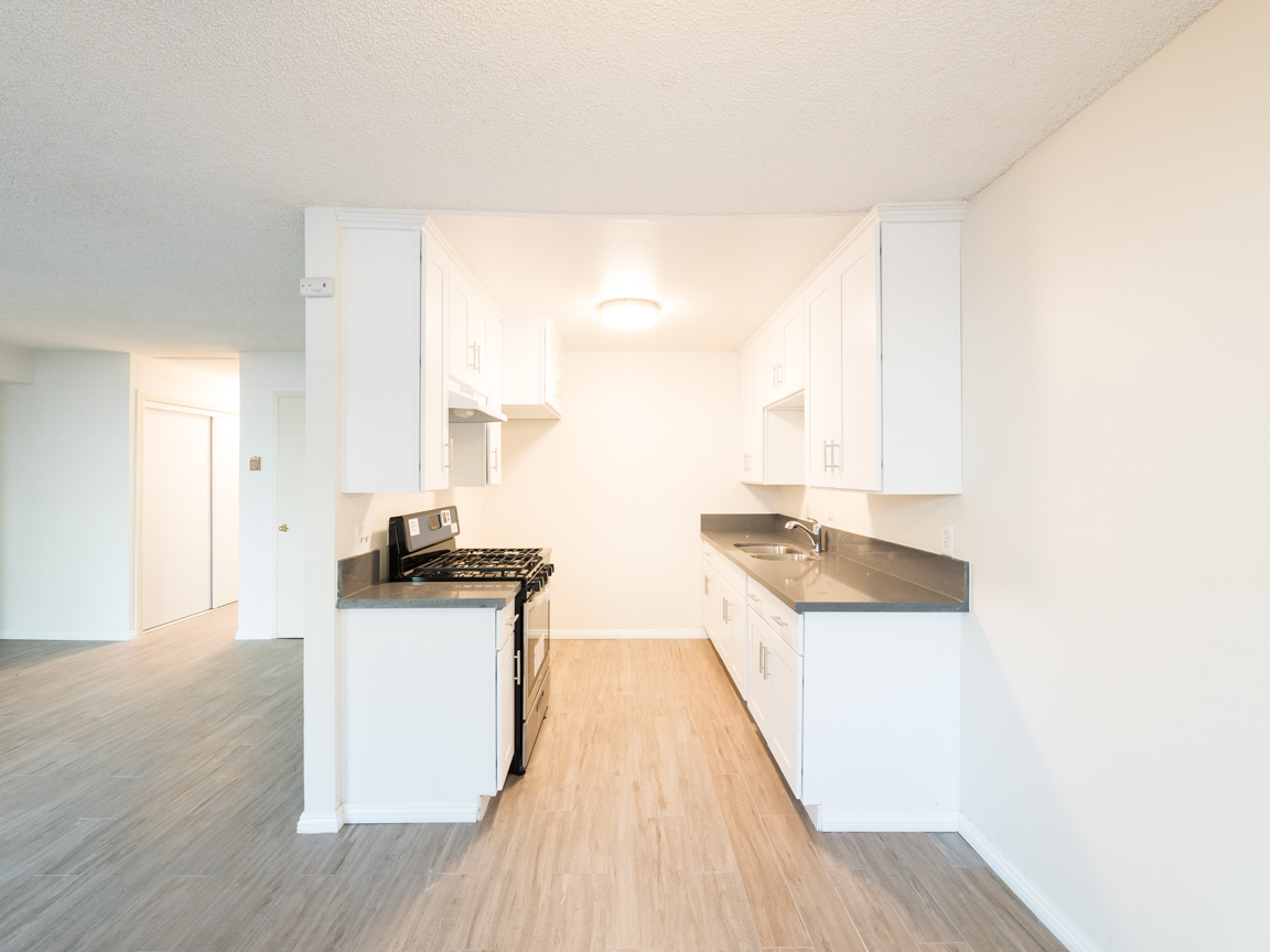 NEWLY RENOVATED | WOOD FLOORS | QUIET STREET | PARKING