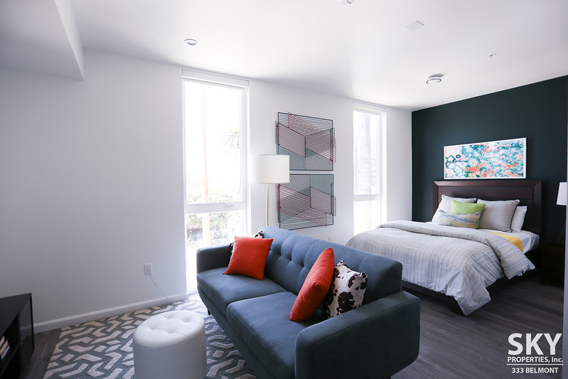 Luxury Studio Apartments | Rooftop Lounge with Spa| Blocks to Echo Park Lake | Pet Friendly | Central Air, All Appliances, In-unit W/D and Parking Included!